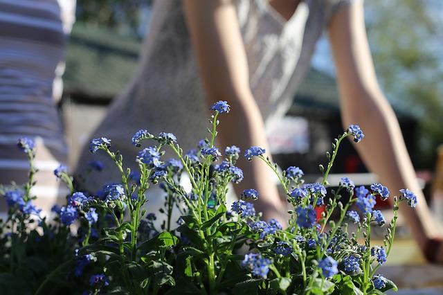 Gardening photo by Pixabay (aedrozda)